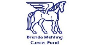 The Brenda Mehling Cancer Fund (BMCF)